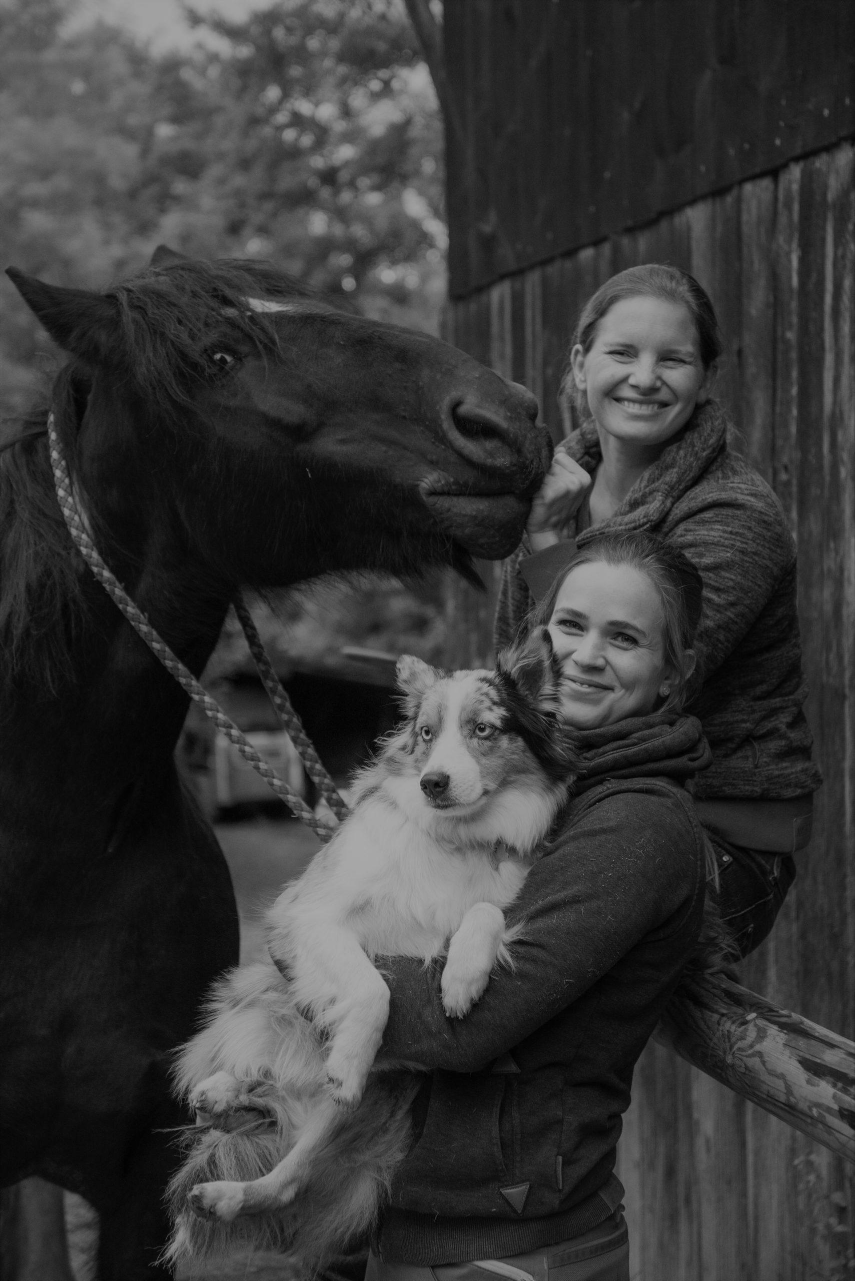 Tiertherapiepraxis Brehm Bensheim